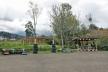 guineo con pan , parque sostenible mayancela, sinincay, huesped nativo wedisenamos, rioparkk (7)